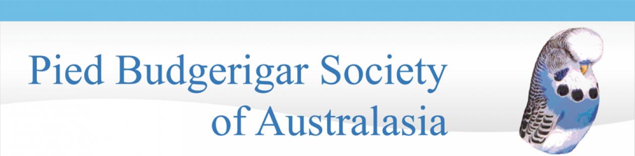Pied Budgerigar Society of Australia